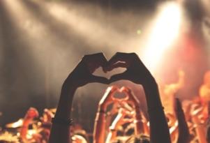 Heart Mb